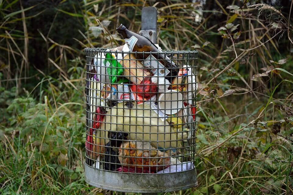 Are You Disposing of Your Waste Correctly?