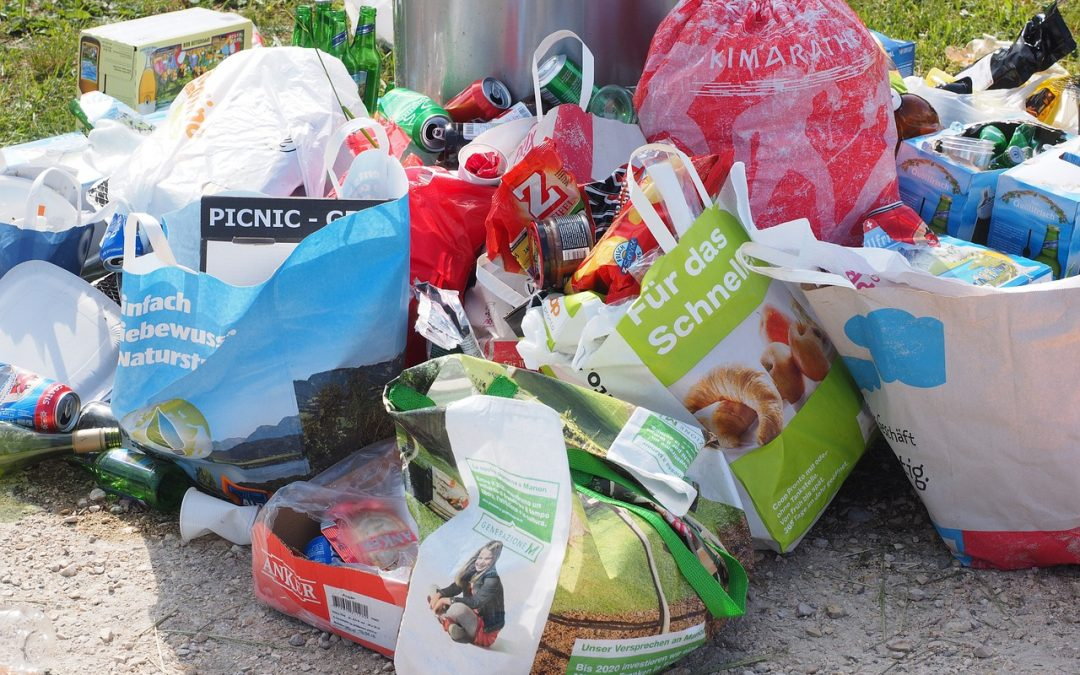 The Problem with Food Packaging Waste