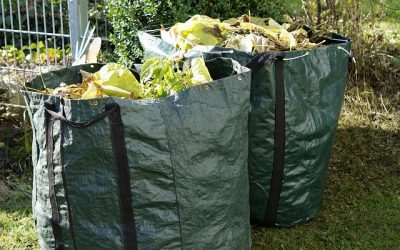 Five interesting facts about green waste